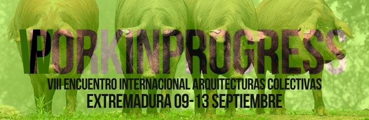 Banner VIII Encuentro Internacional